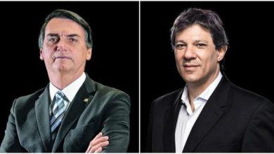 Photo of Bolsonaro e Haddad vão disputar a Presidência da República no 2º Turno