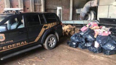 Photo of PF incinera quase uma tonelada de drogas apreendidas em Vilhena