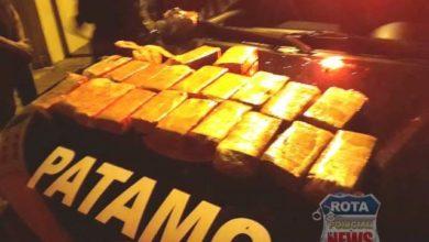 Photo of Atualizada: táxista e outros sete envolvidos com tráfico de drogas são presos em operação, quase 10kg de maconha foram apreendidas