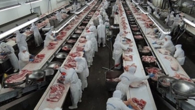 Photo of JBS de Juína/MT é condenada em 2 milhões por série de irregularidades trabalhistas