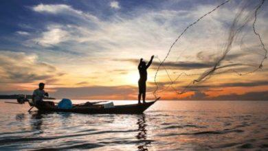 Photo of Rondônia entra em período de defeso e pesca é proibida até março de 2019