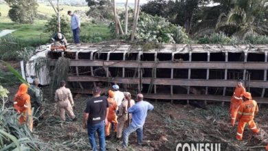 """Foto de Caminhão boiadeiro tomba na 'Curva da Banana"""" nesta tarde de quarta-feira na BR-435"""