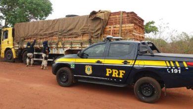 Photo of Polícia Rodoviária Federal realiza Operação Temática de Combate aos Crimes Ambientais