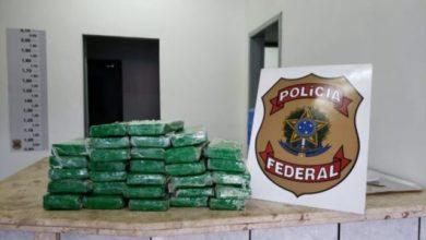Photo of Polícia Federal apreende 31 quilos de cloridrato de cocaína na BR-364
