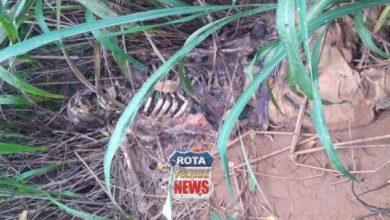 Photo of Indigente: ossada humana encontrada pela PM é sepultada em cemitério de Vilhena
