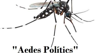 Photo of Artigo de Opinião: O vírus da incompetência política