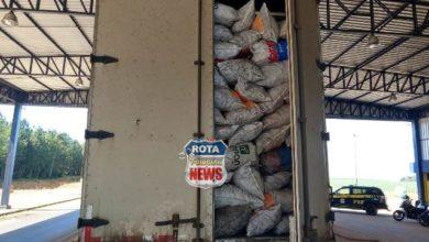 Photo of Em Vilhena, PRF flagra transporte irregular de mais de 60 m³ de carvão