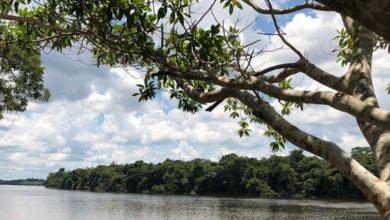 """Foto de Concurso de fotografia """"Somos todos Guaporé"""" está com inscrições abertas em Rondônia"""