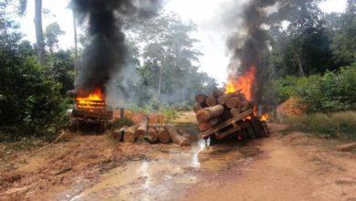 Photo of MPF recomenda destruição de equipamentos apreendidos dentro de reservas em Rondônia