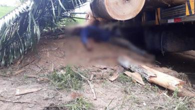 Photo of Trabalhador morre esmagado após tora cair de caminhão