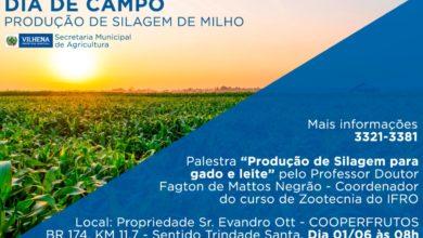 Foto de Dia de Campo de milho neste sábado reúne produtores com palestra na Cooperfrutos
