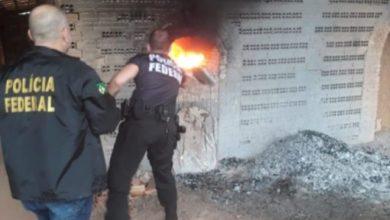 Photo of Em Rondônia, Polícia Federal incinera 283 quilos de drogas variadas