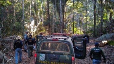Photo of PF faz operação contra grilagem e comércio ilegal de madeiras na terra indígena Karipuna em Rondônia