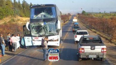 Foto de Ônibus da Eucatur atinge traseira de carreta  na área rural de Vilhena