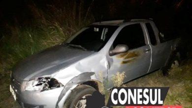 Photo of Gado solto na BR-435 provoca acidente de trânsito próximo ao CTG de Colorado do Oeste