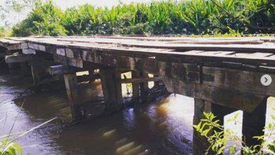 Photo of Deputado Luizinho Goebel recebe vereadores de Pimenteiras do Oeste e discutem restauraçãod a ponte de madeira da Linha 08