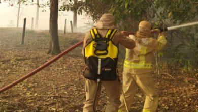 Photo of Assustados, moradores ajudam bombeiros a conter incêndio