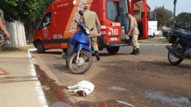 Photo of Cachorro fica preso embaixo de motocicleta e Bombeiros são acionados