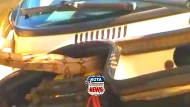 Photo of Vídeo: Corpo de Bombeiros resgata jiboia que estava no motor de carro no Centro de Vilhena