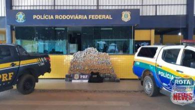 Photo of Em Vilhena, operação da PRF e PM resulta na apreensão de 648 quilos de drogas