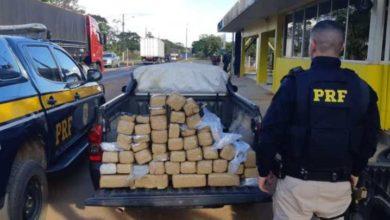 Photo of Balanço da PRF mostra que em 2019 houve mais apreensão de drogas do que no ano passado