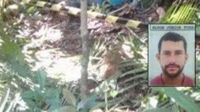 Photo of Trabalhador morre após ser atingido por galho de árvore no interior de Rondônia