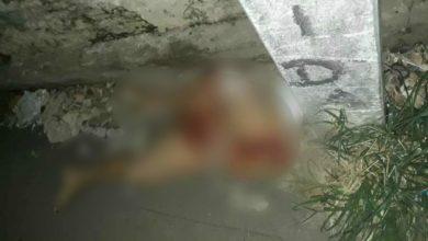 Photo of Pernas de mulher que estava desaparecida são encontradas por moradores
