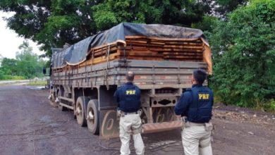 Foto de Em menos de 24h, PRF faz duas apreensões de madeira ilegal