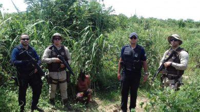 Foto de Dois foragidos da justiça acabam presos pela polícia próximo a uma fazenda em Vilhena