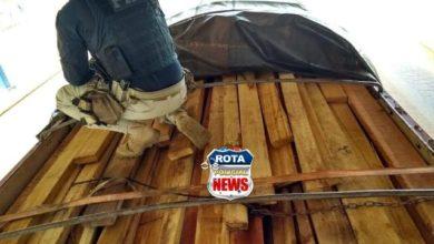 Photo of PRF apreende carga de madeira ilegal e prende motorista por apresentar nota falsificada