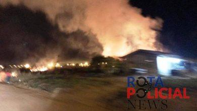 Photo of Bombeiros controlam incêndio em vegetação nas proximidades do residencial União